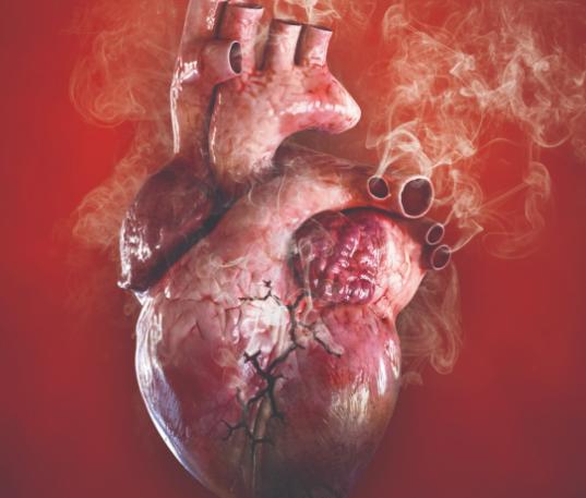 31 de maig, Dia Mundial sense Tabac